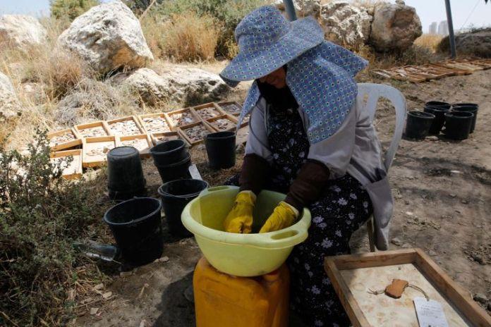 izraelinfo regeszek izraelben1