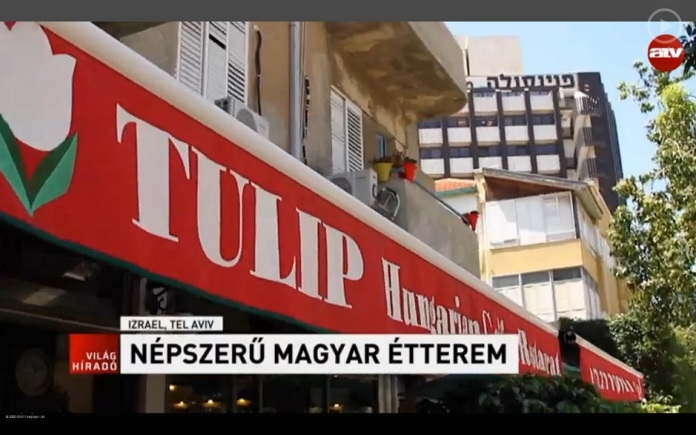 tulip izraeli magyar etterem