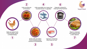 SuperMeat-infographic-350x198